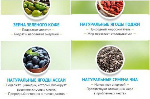 Состав шоколада для похудения