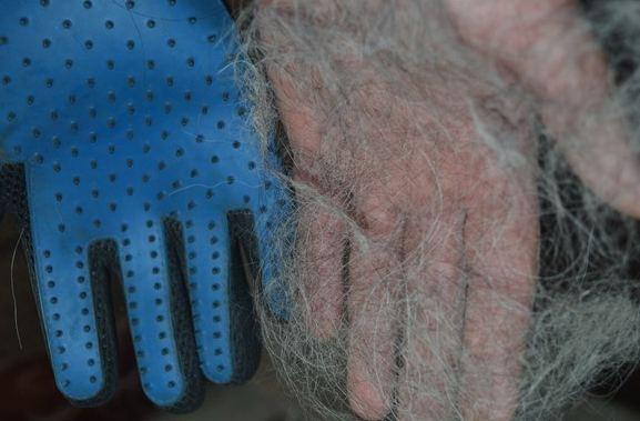 Перчатка Pe Brush Glove для шерсти домашних животных