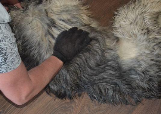 Силиконовая перчатка для шерсти животных
