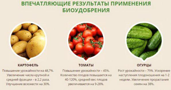 BioGrow стимулятор роста растений