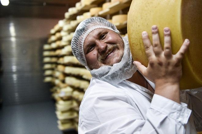 Сколько получится сыра и особенности производства
